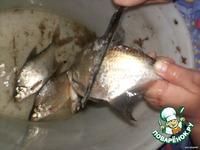Свежая речная рыба на решетке ингредиенты