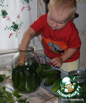 Рассол для соленых огурцов на 1 литр воды сколько соли