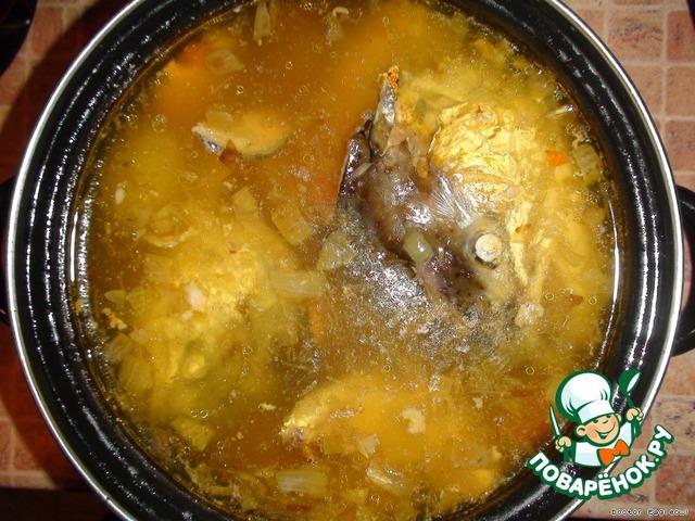 Уха из форели рецепт с фото пошагово