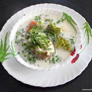 холодные супы на лето рецепты из кабачков