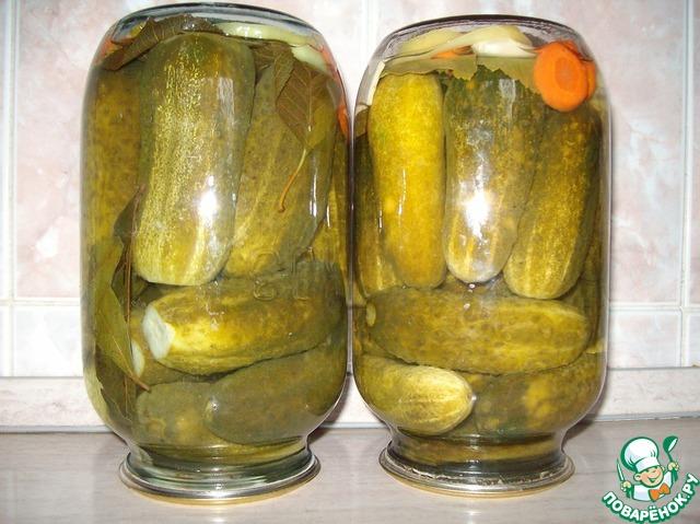 болгарские огурцы рецепт фото