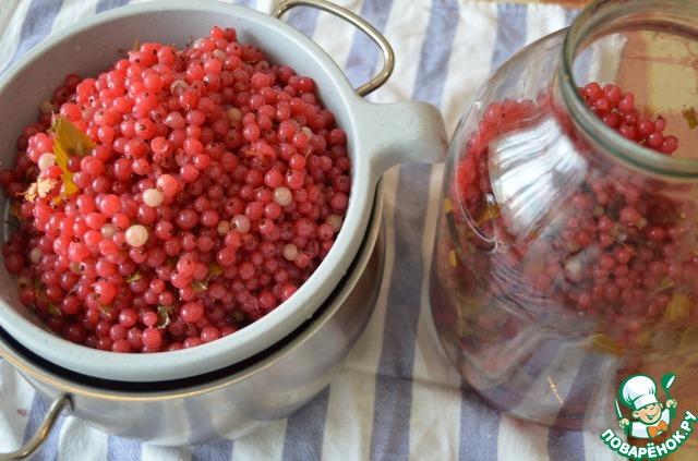 Домашней наливки из красной смородины