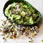 Крем из авокадо с проростками редиса
