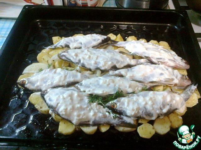 Пирог из речной рыбы рецепты с фото