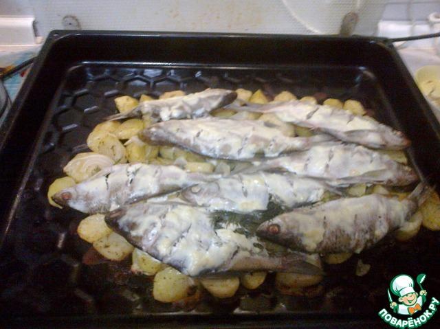 Как вкусно приготовить речную рыбу в духовке фото
