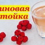 Рецепт настойки из красной рябины