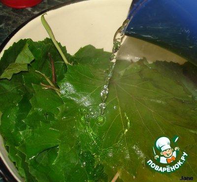 Рецепт с фотографиями Мясо в виноградных листьях #1