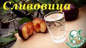 Рецепт Сливовица, рецепт самогона из слив