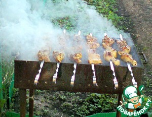 Рецепт Шашлык из куриных окорочков