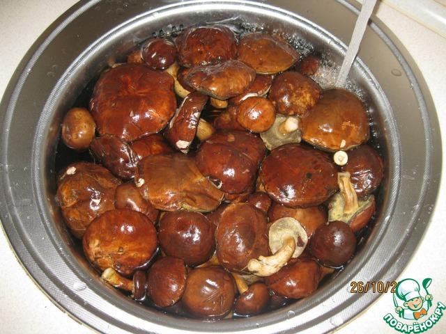 Рецепты с польскими грибами