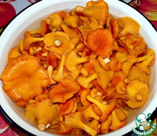 лисички рецепты приготовления с фото пошагово