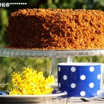 Торт Медовик бархатный