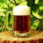 Домашнее пиво, экстракт Muntons Yorkshire Bitter