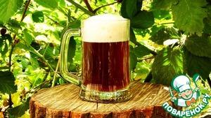 Рецепт Домашнее пиво, экстракт Muntons Yorkshire Bitter