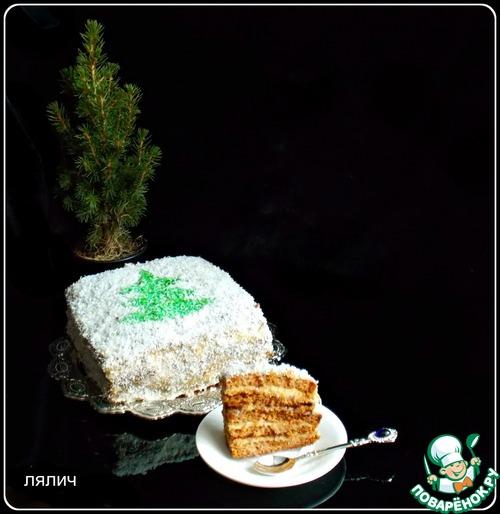 Торт конфи-терра мудрый еврей фото 3