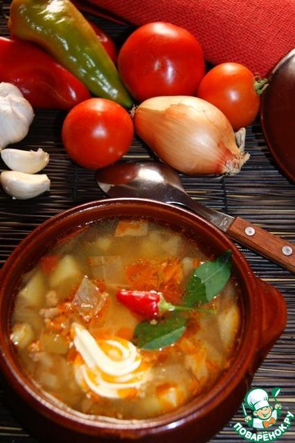 Суп чехословацкий рецепт с фото
