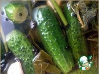 Малосольные огурцы на «заварном» холодном рассоле ингредиенты