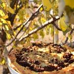 Заварной пирог с фаршем и грибами