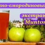 Яблочно-смородиновый сидр