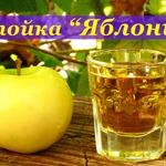 Настойка на водке Яблонька