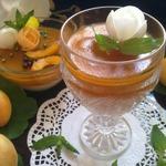 Медовая панна котта с абрикосовым желе