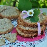 Овсяное кружевное печенье