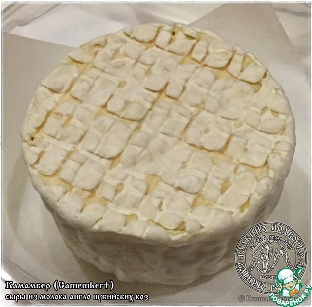 Камамбер рецепт сыра в домашних условиях