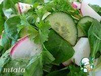Полевой салат с огурцом и редисом ингредиенты