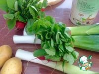 Бархатный весенний суп ингредиенты