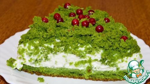 """Торт """"Лесной мох"""""""