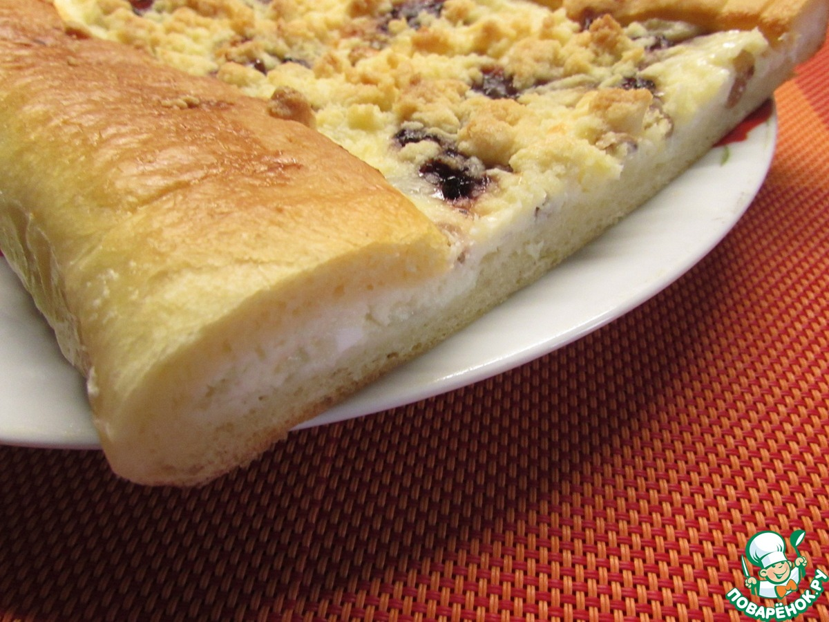 Пирог из творога со сливой рецепт пошагово