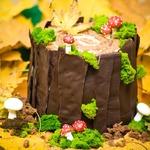 Торт Осенний пенёк