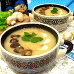 Суп пюре фасолевый с грибами
