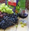 Несколько за в пользу умеренного употребления вина