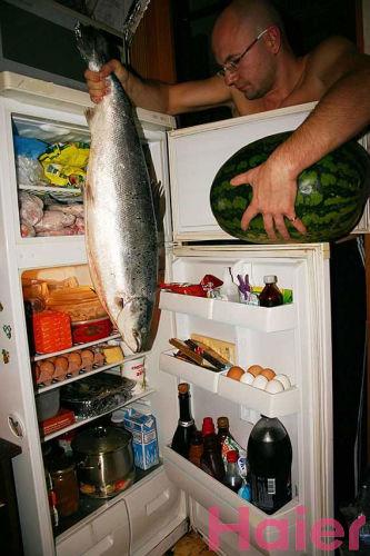 старый холодильник помог победить в конкурсе
