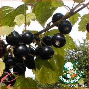 Рецепт Мармелад из черной смородины