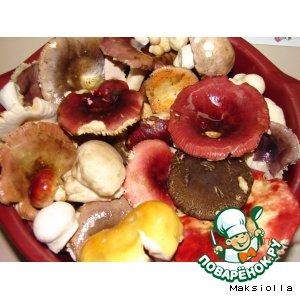 Рецепт Мой грибной супчик