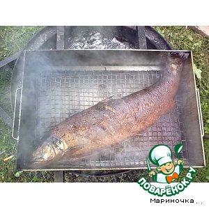 Рецепт Копченая рыбка