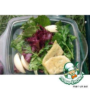 """Рецепт """"Четыре салата"""" с сырными чипсами"""