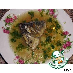Рецепт Рыбный супчик