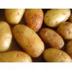 """Картофель в панировке """"ароматика"""""""