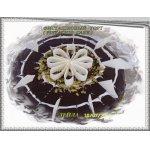 �����������  ���� (pistachio cake)