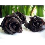 Шоколадно-медовая мастика