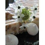 Торт-мороженое с карамелизированными орехами и тонка-безе