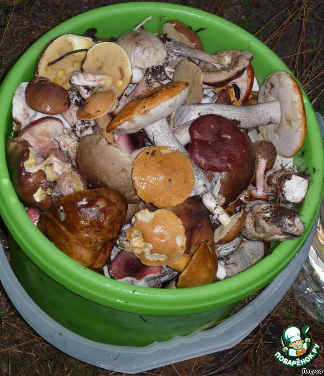 Рецепты замороженных грибов пошагово