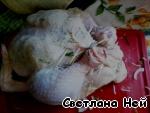 Курица с сыром и травами ингредиенты