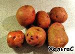 Картошечка хрустящая - прекрасный гарнир к любому новогоднему блюду ингредиенты