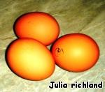 Куриные котлетки от JR ингредиенты