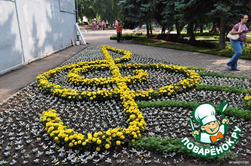 Выставка цветов флора в омске