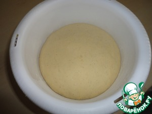 After an hour take out the light and porous dough. I have it standing in the microwave! (there are no drafts!)